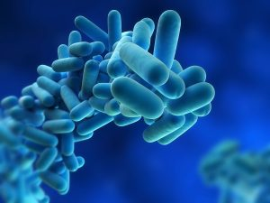 Lubron Legionella control